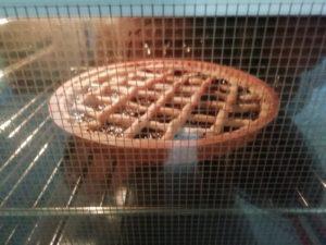 Crostata con marmellata in forno