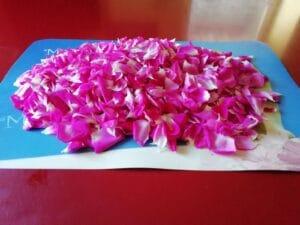 Scriroppo di petali di rosa